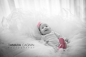 Babies | Gioia